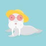 Cute sea lion. Royalty Free Stock Photo