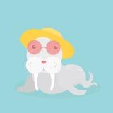 Cute sea lion. Stock Photo