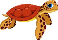 Cute sea turtle cartoon. Funny and adorable. Illustration of cute sea turtle cartoon isolated on white background royalty free illustration