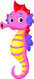 Cute seahorse cartoon Royalty Free Stock Image