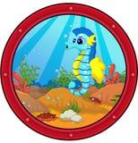 Cute seahorse cartoon Stock Image