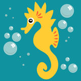 Cute seahorse Stock Photography