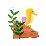 Cute seahorse isolated icon Royalty Free Stock Photography