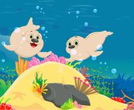 Cute seal cartoon with a beautiful underwater world Stock Photography