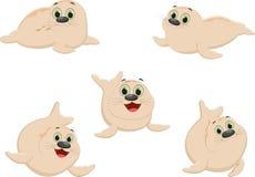 Cute seal cartoon collectiion Royalty Free Stock Image