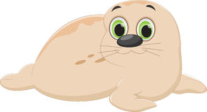 Cute Seal cartoon Royalty Free Stock Images