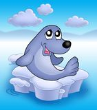 Cute seal on iceberg 2 Royalty Free Stock Photo
