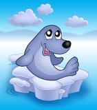 Cute seal on iceberg 2. Cute seal an iceberg 2 - color illustration Royalty Free Stock Photo