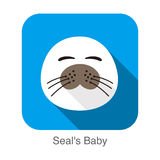 Cute seal's baby flat icon, vector illustration. Cute seal's baby flat icon design, vector illustration Stock Photo