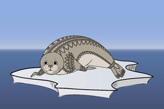 Cute seal Zentangle vector. Phoca on the ice Zen Tangle. Wild animals. Stock Photography