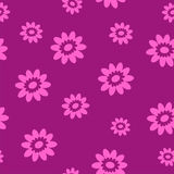 Cute seamless background with flowers. Cute Seamless background with camomile flowers in purple color Stock Photos