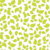 Cute seamless background with leaves Stock Images