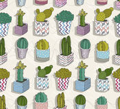 Cute seamless cactus patter Royalty Free Stock Images