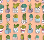 Cute seamless cactus pattern. Vector background Stock Photo