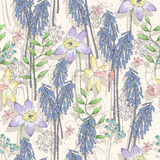 Cute seamless floral pattern. Background  with flowers Royalty Free Stock Images