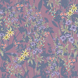 Cute seamless floral pattern. Background  with flowers Stock Image