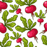 Cute seamless hand drawn radish background Royalty Free Stock Image