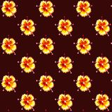 Cute seamless pattern with bright watercolor flowers on brown background. Royalty Free Stock Photos