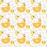 Cute seamless pattern with chickens and hens. On white background with colorful dots Stock Image
