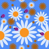 Cute seamless pattern with daisies and bugs. Cute seamless pattern with a daisies and bugs Stock Photography