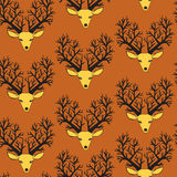 Cute seamless pattern with deers Royalty Free Stock Photography