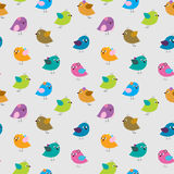 Cute seamless pattern with different cartoon birds Royalty Free Stock Photos