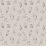 Cute seamless pattern with different forest owls Royalty Free Stock Photos