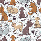 Cute seamless pattern with kittens Stock Images