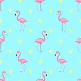 Cute  Seamless pattern pink flamingo Stock Image