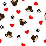 Cute seamless pattern with pug dog, paw print and red heart, transparent background Stock Photos