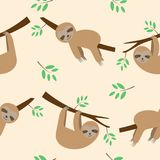 Cute seamless pattern sloths cartoon sleeping and hanging. Stock Images