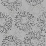 Cute seamless pattern with sunflowers. Abstract gray, black and white. Royalty Free Stock Photo