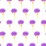 Cute seamless pattern with thistle flowers. Vector illustration. Stock Photography