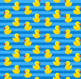 Cute seamless pattern with yellow rubber duck on blue background. Stock Image