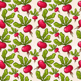 Cute seamless radish background Royalty Free Stock Image