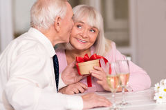 Cute senior couple celebrating their love Royalty Free Stock Images