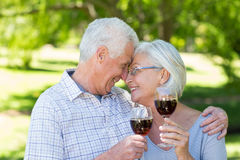 Cute senior couple drinking at the park Stock Image