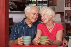 Cute Senior Couple in Love Stock Images