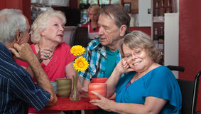 Cute Senior in Wheelchair. Cute European senior women in wheelchair with friends Stock Photography