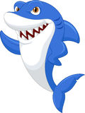 Cute shark cartoon Stock Photos