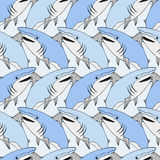 Cute sharks pattern. Nautical seamless print. Sea life vector illustration. Hand drawn background. Smiling shark background Royalty Free Stock Image