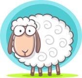 Cute Sheep. Illustration of cartoon cute sheep Royalty Free Stock Photos