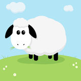 Cute Sheep. An illustration of a cute sheep standing in a field Stock Photography