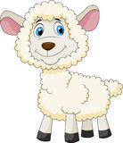Cute sheep cartoon Stock Image