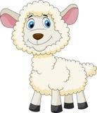 Cute sheep cartoon Stock Image