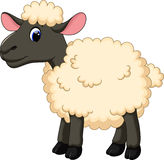 Cute sheep cartoon Royalty Free Stock Photos