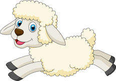 Cute sheep cartoon jumping Royalty Free Stock Images