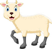Cute sheep cartoon. Vector illustration of cute sheep cartoon isolated on white background Stock Photos