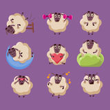 Cute Sheep Chatacter Emotions Collection Stock Images