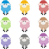 Cute sheep in different colors Royalty Free Stock Photography
